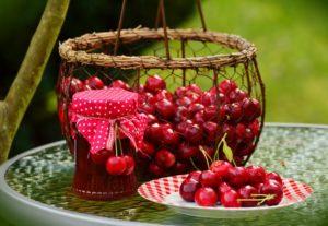 drylownica do świeżych owoców